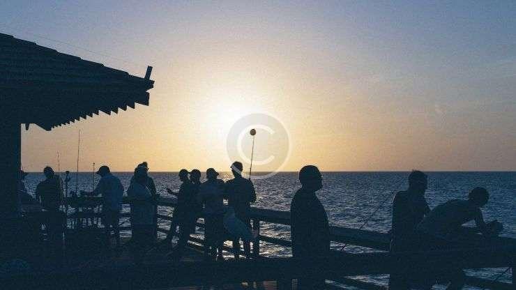 Seafood Week: Fests, Games and Drinks